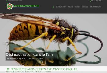 Réalisation creation site web le frelon vert